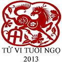 BÓI TỬ VI TUỔI NGỌ 2013 logo