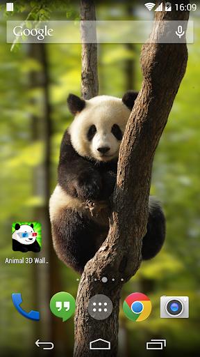 Animals 3D Wallpapers
