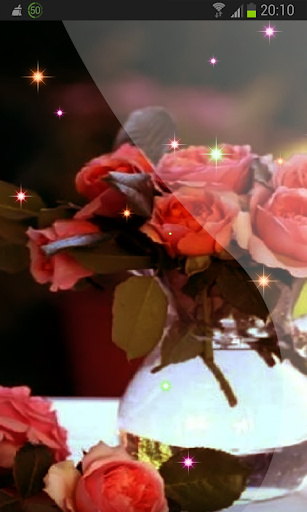 Flowering Roses Wallpaper
