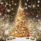 Christmas Tree Live Wallpaper3 icon