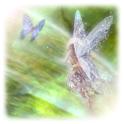 Magic fairies Live Wallpaper icon