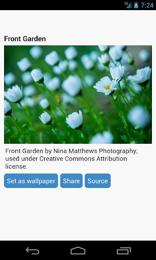 Flowers Wallpaper  screenshots 2