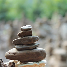 by Miranda Powers - Nature Up Close Rock & Stone