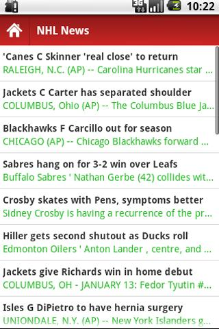 American Hockey News- screenshot