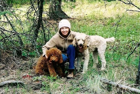 Sharon Thesen: TCR Writer-in-Residence 2012