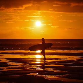 Surfer Girl by Lynnie Adams - Landscapes Sunsets & Sunrises ( surfer, sunset, seascape, beach, golden,  )