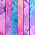 WALLPAPER SET - Glitter Flower