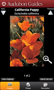 Audubon Wildflowers California - screenshot thumbnail