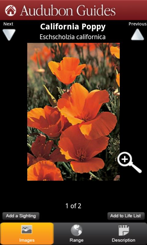 Audubon Wildflowers California - screenshot