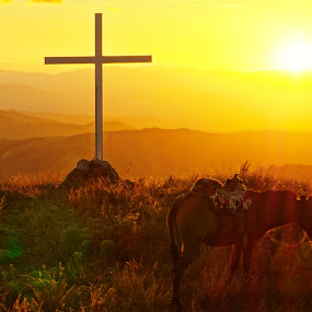 cross and mule by Charles Saunders - Landscapes Mountains & Hills ( mountains, mule, sunset, dominican republic, cross, relax, tranquil, relaxing, tranquility )