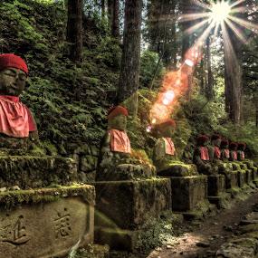 Narabi Jizo by Nicola Scarselli - Landscapes Travel ( japan, nikko )