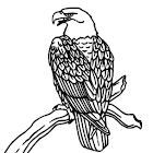 Tattoo Glossary icon