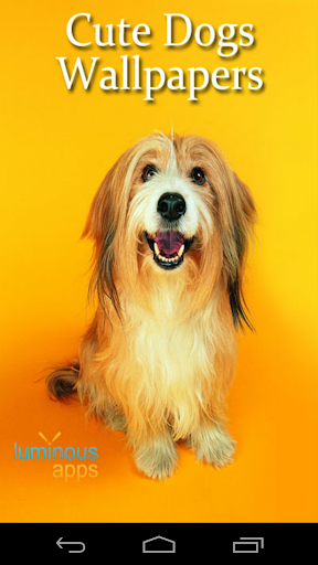 Cute Dogs Live Wallpapers