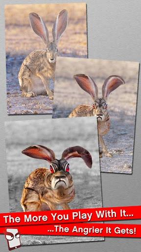 Angry Bunny Free