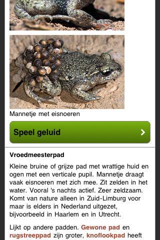 Reptielen en Amfibieën- screenshot