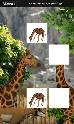 Memorize Zoo