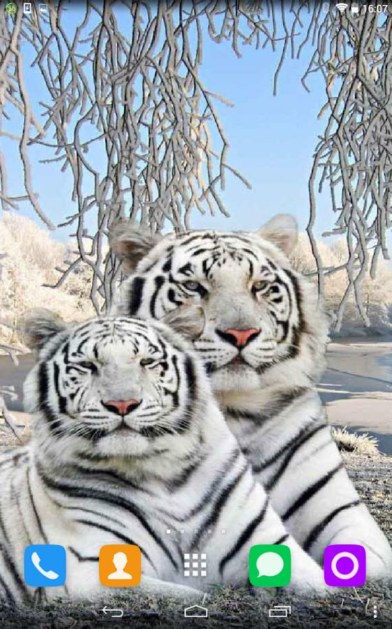 Живые обои тигрята на андроид