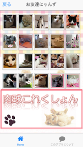 Cat paws Photo collection screenshot 5