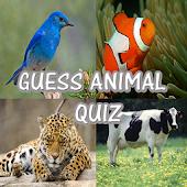 Guess Animal Quiz