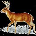 Deer Call logo