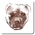 APBT Online Database icon