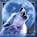 Wolf Song HD live wallpaper icon