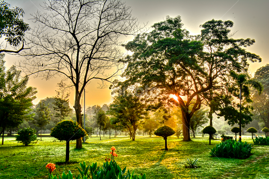 by Ravi Kashyap - Landscapes Sunsets & Sunrises (  )