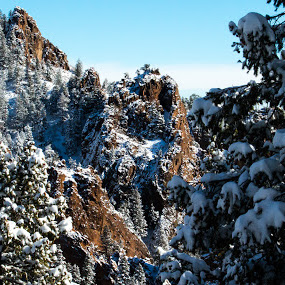 Frozen Cliffs by Andrew Brinkman - Novices Only Landscapes ( cliffs, nature, snow, rocky mountains, trees, rocks )