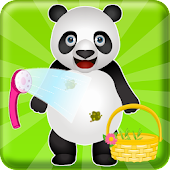 Pet Care Panda Animal