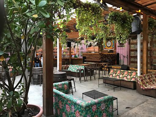 El Patio Wynwood - Miami   Restaurant Review - Zagat