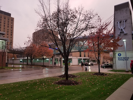 The University of Akron Picture
