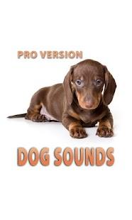 狗的聲音和鈴聲專業版