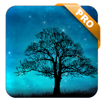 Dream Night Pro Live Wallpaper v1.5.6