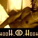 dhooks logo