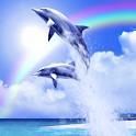 Tropical Ocean-Rainbow icon