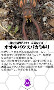 巨虫図鑑ライト版- screenshot thumbnail