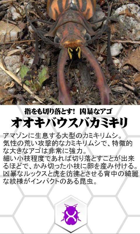 巨虫図鑑ライト版- screenshot