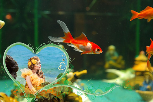 Aquarium Photo Frames Pro