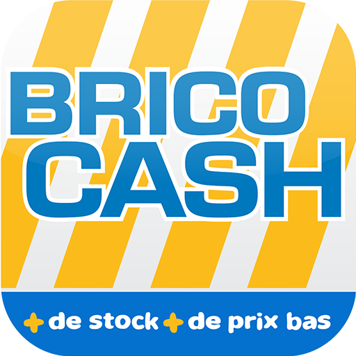 Brico Cash - Scan Icon