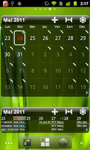 Pure Grid calendar widget Screenshot