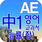 중1 교과서 영단어 능률(장)