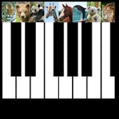 Baby Animal Piano Free