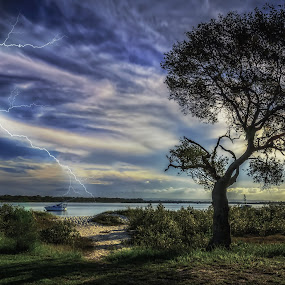 Lighting, Camera, Action by Alex Bogdan - Landscapes Weather ( water, clouds, sand, lightning, sky, tree, grass, texture, sunset, lines, drama )