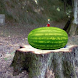 Exploding Watermelon LWP