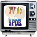 TV'de Spor logo