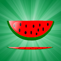 Fruit Bash icon