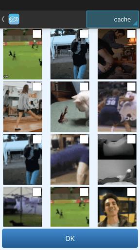 制作动态微信表情-视频-照片-Wechat|玩工具App免費|玩APPs