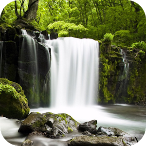 Relax Forest - Nature sounds 4 0 6 Apk, Free Lifestyle