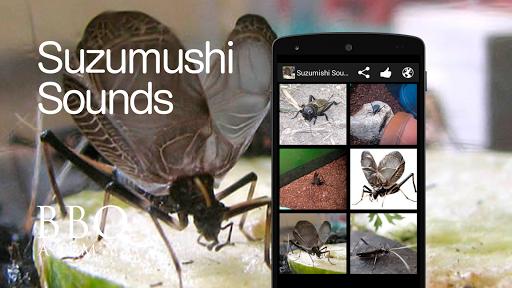 Suzumushi bell cricket Sounds