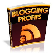 Blogging Profits Guide